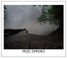 Makiling Mud Spring